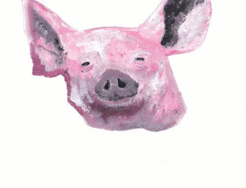 Pig 0.3