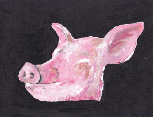 Pig 0.2